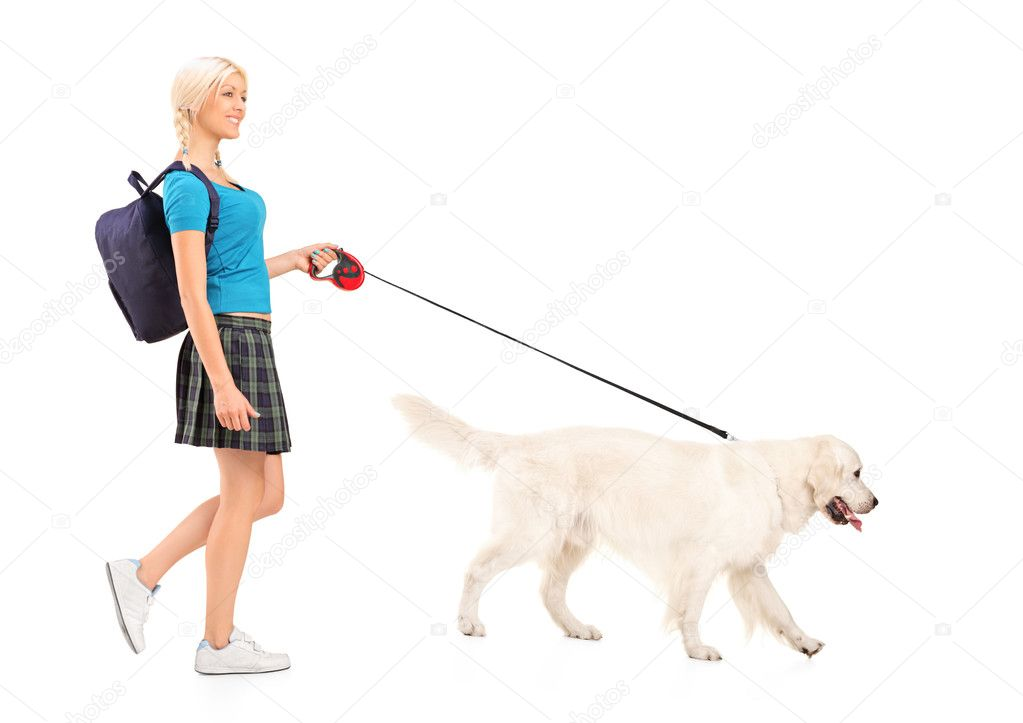 perro caminar estudiante foto de stock 45885703 depositphotos. Black Bedroom Furniture Sets. Home Design Ideas