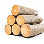 Beech firewood — Stock Photo #45891753