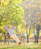Senior gentleman relaxing in park — ストック写真