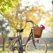 Woman's bike with basket and flowers — Stock Photo #46592507