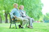 Elderly couple relaxing in park — Стоковое фото