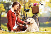 Beautiful female looking at dog — Stock Photo