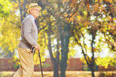 Senior gentleman walking in park — Stock Photo