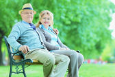 Mature couple posing in park — Stock Photo