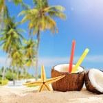 Coconut cocktail on tropical beach — Stock Photo #51333055