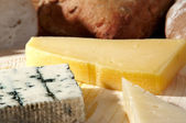 Cheese platter selective focus — Stock Photo