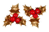 Holly branch. Christmas symbol — Stock Photo