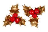 Holly branch. Christmas symbol — Stock Photo