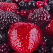 Strawberries, bilberries, red currants, raspberries and blackber — Stock Photo