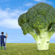 Thumbnail farmer along a broccoli — Stock Photo #46446905
