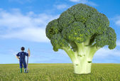 Thumbnail farmer along a broccoli — Stock Photo