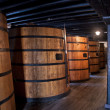 Постер, плакат: Cellar with oak barrels