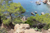 Coastline of Lloret De Mar — Foto de Stock
