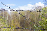 Barbed wire fence in industrial zone — Zdjęcie stockowe