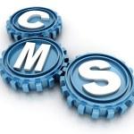 ������, ������: CMS gears