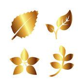 Golden Leaf Vector — Stock Vector