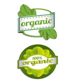 Hundred Percent Vector Organic Label — Stock Vector