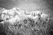 Black and white portrait of a beautiful smiling young woman wearing a flower print summer dress lying on grass on the meadow. — 图库照片