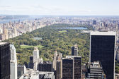 Central park — Foto Stock