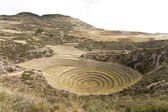 Agricultural terraces — Foto Stock