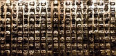 Panel of skulls — Stock Photo
