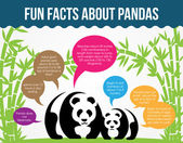 Fun Facts About Pandas. Flat Infographic Vector — Wektor stockowy