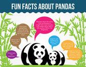 Fun Facts About Pandas. Flat Infographic Vector — Stock vektor