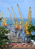 Yellow cranes for lifting — Stock Photo
