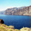Los Gigantes, Tenerife — Stock Photo #47043343