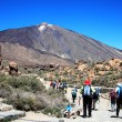 Roads and rocky lava of volcano Teide — Stock Photo #47257935