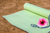 Yoga Mat — Стоковое фото
