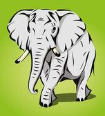 Afrikaanse olifant lopen — Stockvector
