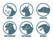 Dog breeds labels — Stockvektor