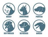 Dog breeds labels — Stock Vector