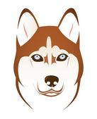 Husky hunden — Stockvektor