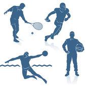 Sport disciplines — Stock Vector