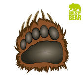 Grizzly bear paw — Stock Vector