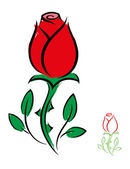 Red rose — Vector de stock