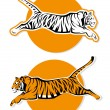 Isolated tiger sign — Stock Vector #46551375