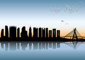 Sao Paulo skyline — Vetor de Stock