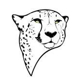 Isolierte gepard kopf — Stockvektor