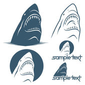Shark — Stock Vector