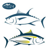 Tuna fish — Stock Vector