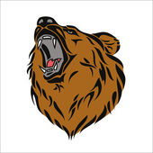 Grizzly bear head — Stock Vector