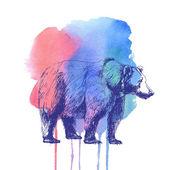 Bear and watercolor spot. — Stock Photo
