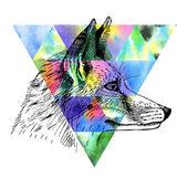 Fox and watercolor triangle. — Stock Photo