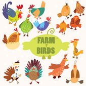 Cute Farm birds.Turkey, chicken, goose, duck — Vecteur