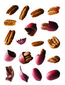 Pecan entire and pieces on white background — Stock Photo