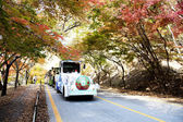 Tourist car on autumn road — Stock Photo