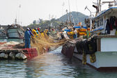 Fishermen unload the catch of anchovies — Stock Photo